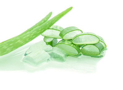aloe vera isolate on white background