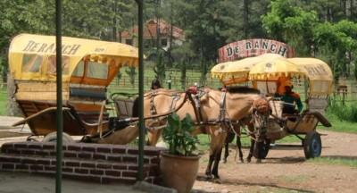 De-Ranch-Tempat-Libur-Dekat-Bandung