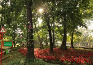 wisata-kota-bandung-taman-pustaka-bunga