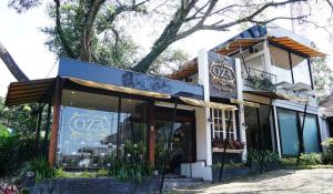 OZA Tea House2