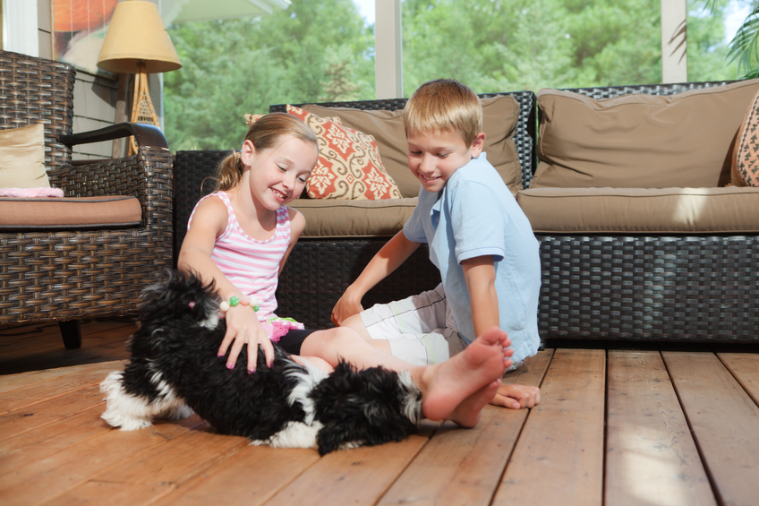 Subject: Happy children with their family Havanese  pet dog.