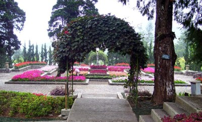 Melrimba Garden1