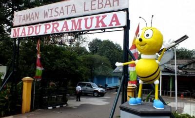 gambar patung lebah