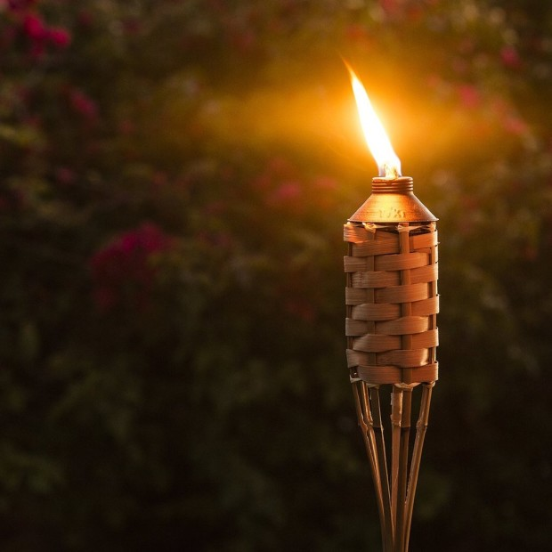 Bamboo Torches